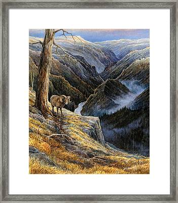 Canyon Solitude Framed Print by Steve Spencer