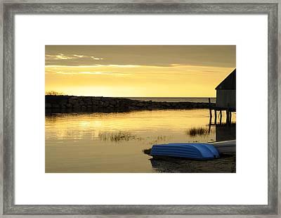 Cape Cod Delight Framed Print by Luke Moore