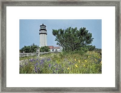 Cape Cod Lighthouse Framed Print by John Haldane