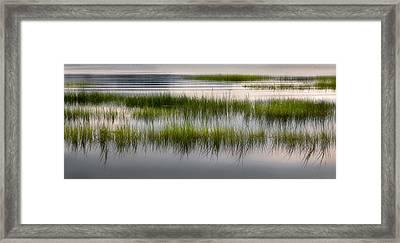 Cape Cod Marsh Framed Print by Bill Wakeley