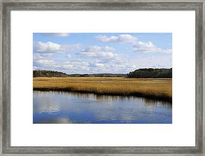 Cape Cod Marsh Framed Print by Luke Moore