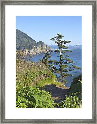 Cape Falcon Viewpoint Oregon Coast. Framed Print by Gino Rigucci