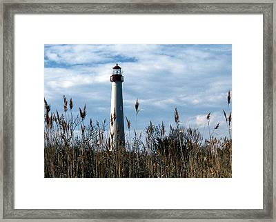 Cape May Light Framed Print by Skip Willits