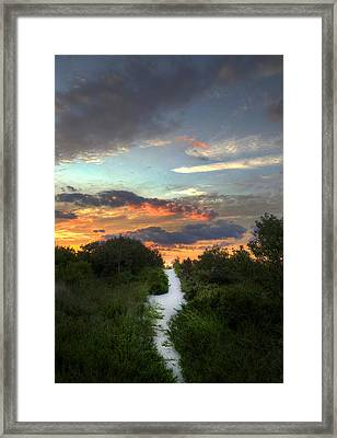 Cape May New Jersey Framed Print by Kenny  Noddin