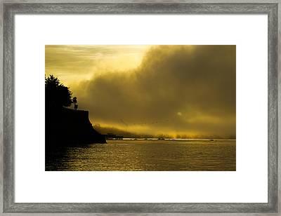 Capitola Dawn Framed Print by David Alexander