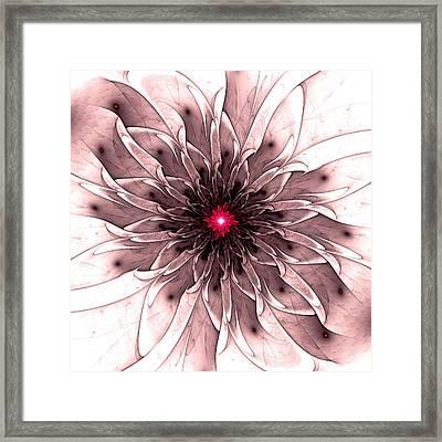 Captivating Framed Print by Anastasiya Malakhova