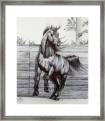 Captured At Last Framed Print by Cheryl Poland