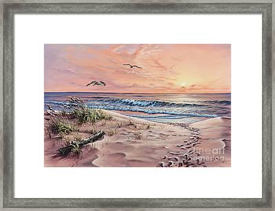 Captured In The Morning Light Framed Print by Joe Mandrick