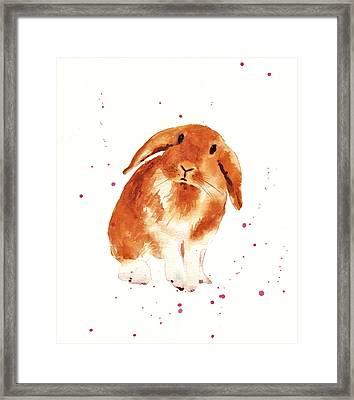 Caramel Cuddles Bunny Framed Print by Alison Fennell