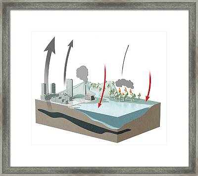 Carbon Dioxide Emission And Absorption Framed Print by Claus Lunau