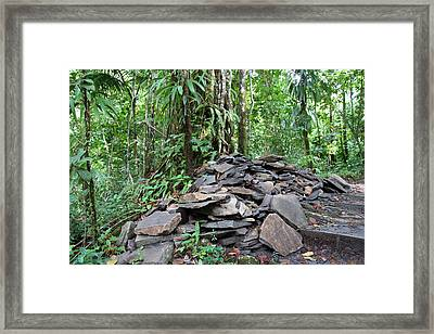 Caribbean Cruise - Dominica - 1212262 Framed Print by DC Photographer