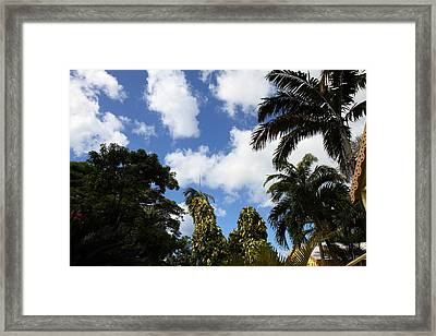 Caribbean Cruise - St Kitts - 1212194 Framed Print by DC Photographer