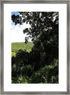 Caribbean Cruise - St Kitts - 1212225 Framed Print by DC Photographer