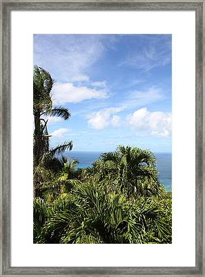Caribbean Cruise - St Thomas - 1212212 Framed Print by DC Photographer