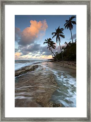 Caribbean Flow  Framed Print by Patrick Downey