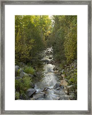 Caribou Creek Framed Print by Idaho Scenic Images Linda Lantzy
