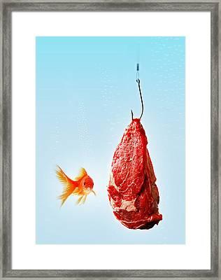 Carnivorous Goldfish Framed Print by Roberto Adrian