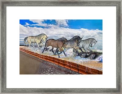 Carolina Blues Framed Print by Betsy Knapp