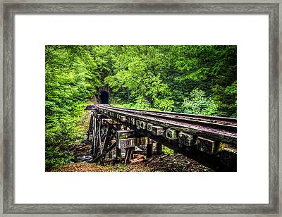 Carolina Railroad Trestle Framed Print by Debra and Dave Vanderlaan