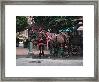 Carriage Horses At City Market Framed Print by Linda Ryan