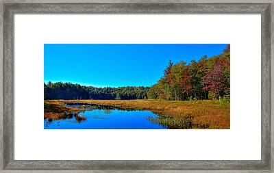 Cary Lake In Early Autumn Framed Print by David Patterson