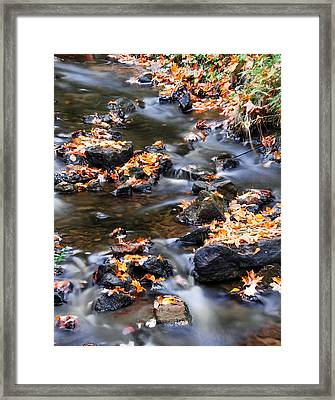 Cascading Autumn Leaves On The Miners River Framed Print by Optical Playground By MP Ray