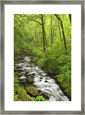 Cascading Stream In The Woods Framed Print by Andrew Soundarajan
