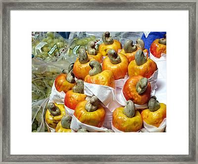 Cashew Fruit - Mercade Municipal Framed Print by Julie Niemela