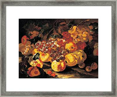 Castelli Giovanni Paolo Know Framed Print by Everett