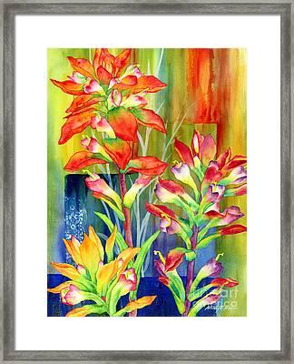 Castilleja Indivisa Framed Print by Hailey E Herrera