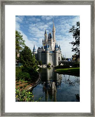 Castle Reflections Framed Print by Nora Martinez