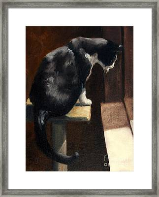 Cat At A Window With A View Framed Print by Lisa Phillips Owens