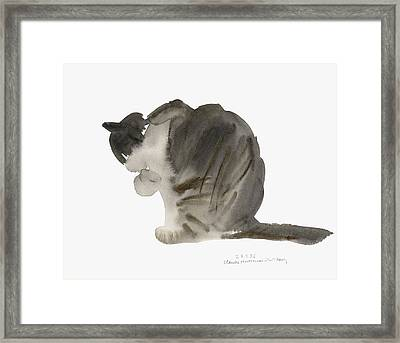 Cat Framed Print by Claudia Hutchins-Puechavy
