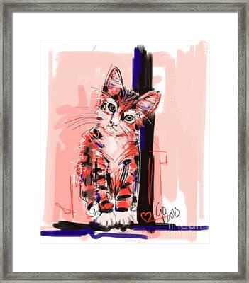 Cat I See You Framed Print by Go Van Kampen
