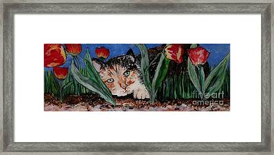 Cat In The Grass Framed Print by Cathy Weaver