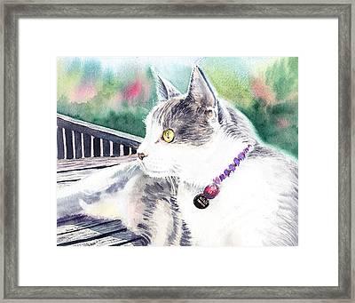 Cat Framed Print by Irina Sztukowski