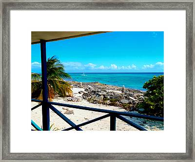 Cat Island Framed Print by Carey Chen