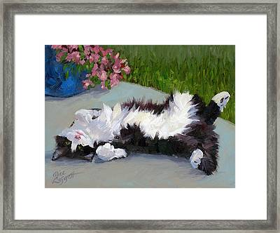Cat On A Hot Day Framed Print by Alice Leggett