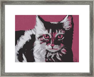 Cat On Red Framed Print by Kazumi Whitemoon