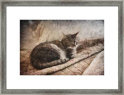 Cat On The Bed Painterly Framed Print by Carol Leigh