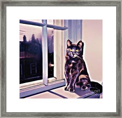 Cat On Window Sill Framed Print by John Malone