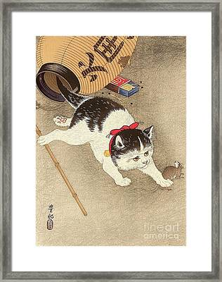 Cat Framed Print by Pg Reproductions
