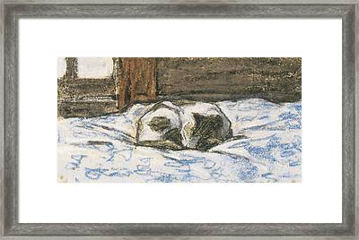 Cat Sleeping On A Bed Framed Print by Claude Monet