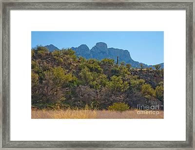 Catalina Mountains, Arizona Framed Print by Richard and Ellen Thane
