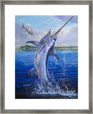 Catalina Sword Off0045 Framed Print by Carey Chen