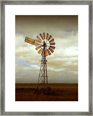 Catch The Wind Framed Print by Holly Kempe