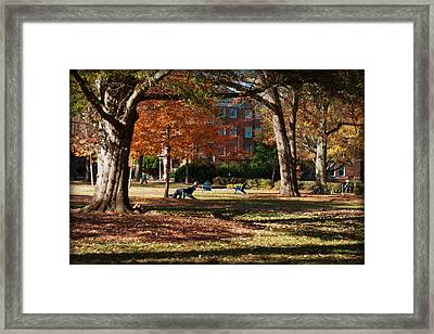 Catching Rays - Davidson College Framed Print by Paulette B Wright