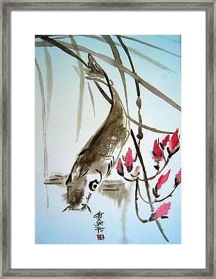 Catfish Framed Print by Alena Samsonov