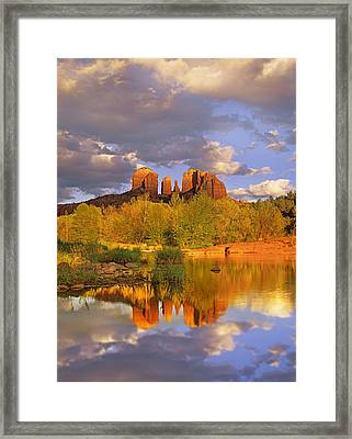 Cathedral Rock Reflected In Oak Creek Framed Print by Tim Fitzharris