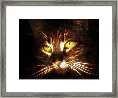 Cat's Eyes - Fractal Framed Print by Lilia D